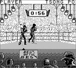 Pantallazo de Best of the Best Championship Karate para Game Boy