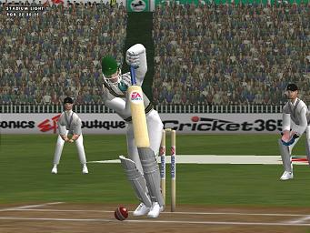 Pantallazo de Cricket 2002 para PC
