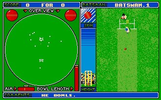 Pantallazo de Cricket Captain para Amiga