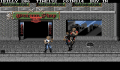 Pantallazo nº 65033 de Double Dragon III: The Rosetta Stone (320 x 200)
