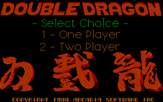 Pantallazo de Double Dragon para PC