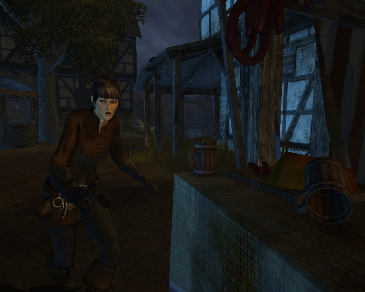 Pantallazo de Drakensang: The Dark Eye para PC
