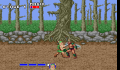 Foto 2 de Golden Axe
