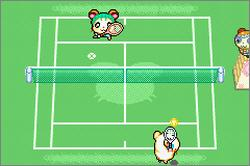 Pantallazo de Hamtaro: Ham-Ham Games para Game Boy Advance