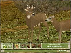 Pantallazo de Hunting Unlimited para PC