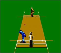 Pantallazo de International Cricket European para Nintendo (NES)