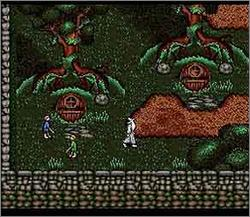 The Lord of the Rings Volume 1 (SNES)