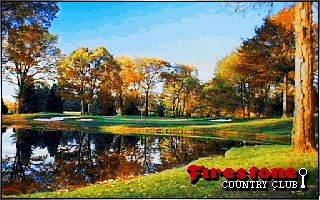 Pantallazo de Links Championship Course: Firestone Country Club para PC
