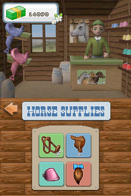 Pantallazo de Mary King's: Riding School para Nintendo DS