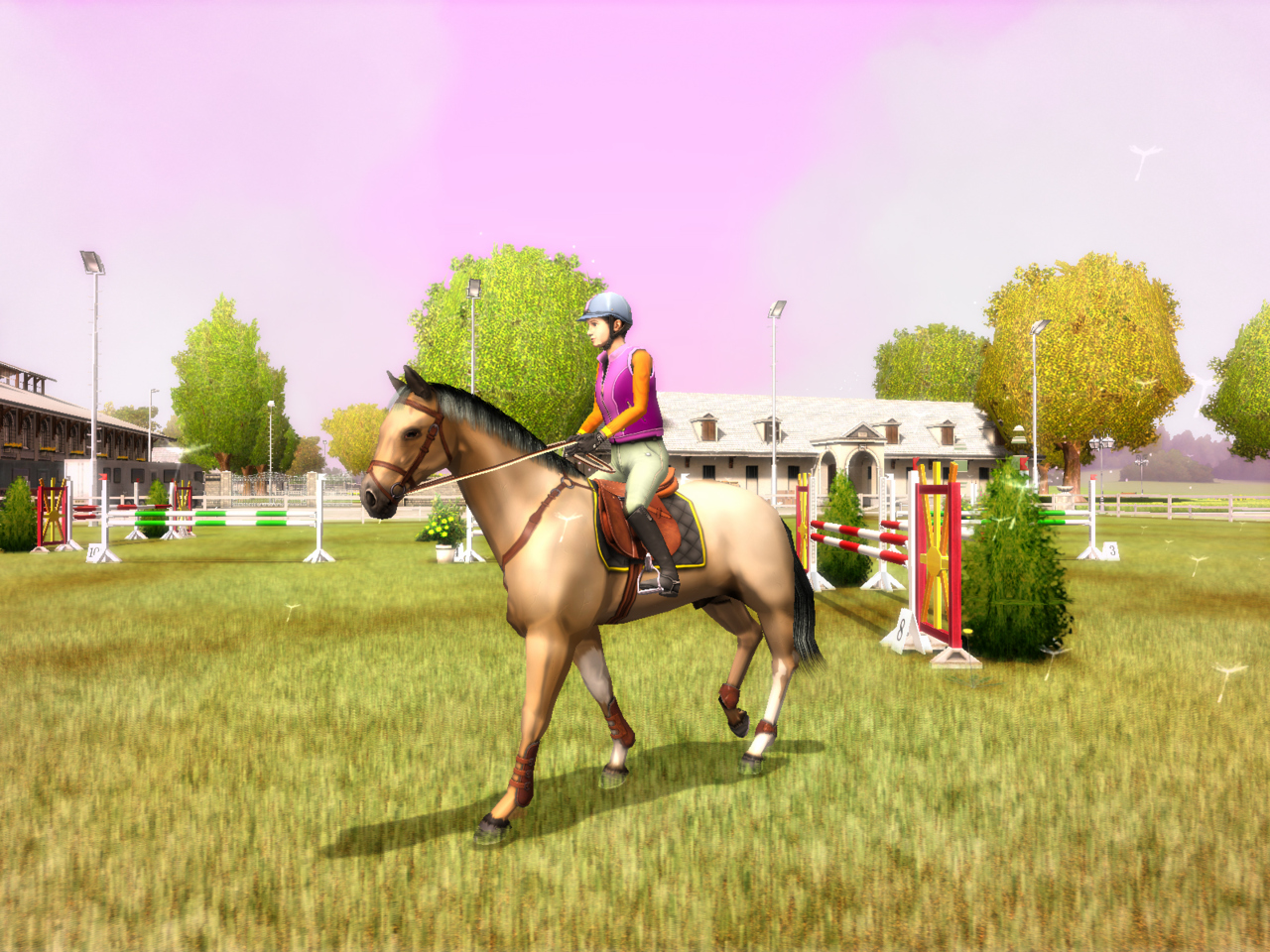 Pantallazo de My Horse and Me para Wii