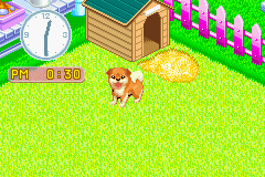 Pantallazo de Nakayoshi Pet Advance Series 2 Kawaii Koinu (Japonés) para Game Boy Advance
