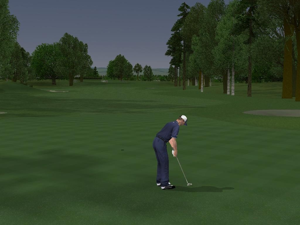 Pantallazo de ProStroke Golf: World Tour 2007 para PC