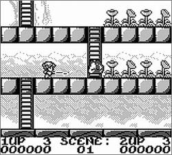 Pantallazo de Rod-Land para Game Boy