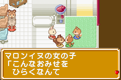 Pantallazo de Sylvania Family - Fashion Designer Ninaritai! (Japonés) para Game Boy Advance