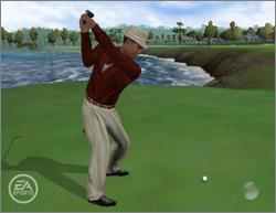 Pantallazo de Tiger Woods PGA Tour 06 para PC