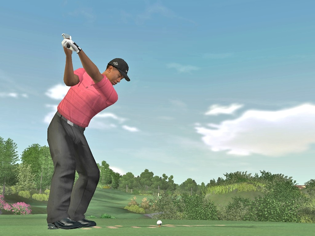 Pantallazo de Tiger Woods PGA Tour 07 para PC