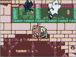 Pantallazo de Toonsylvania para Game Boy Color