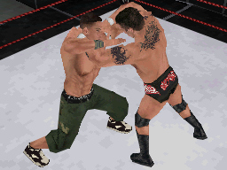 Pantallazo de WWE SmackDown vs. Raw 2009 para Nintendo DS