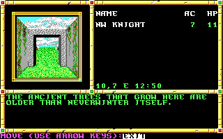 Imagen del juego Advanced Dungeons And Dragons: Neverwinter Nights