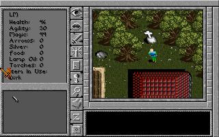Imagen del juego Prophecy Of The Shadow