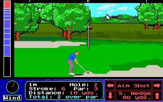Imagen del juego Jack Nicklaus Presents The International Course Disk