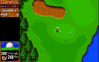 Imagen del juego Sensible Golf